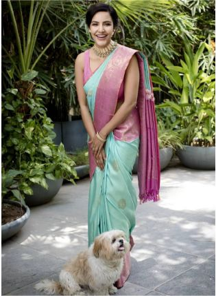 Pale Blue Bollywood Saree With Silk Weave Details