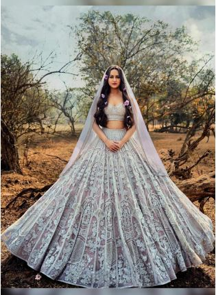 Tempting Light Grey Soft Net Base Embroidered Lehenga Choli