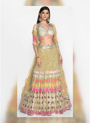 Beautiful Beige Color Soft Net Base Heavy Work Flared Lehenga Choli